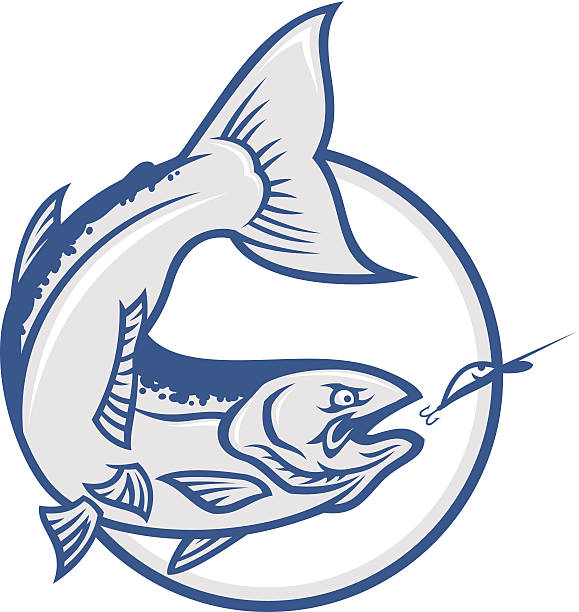salmon - redfish stock illustrations, clip art, cartoons, & icons