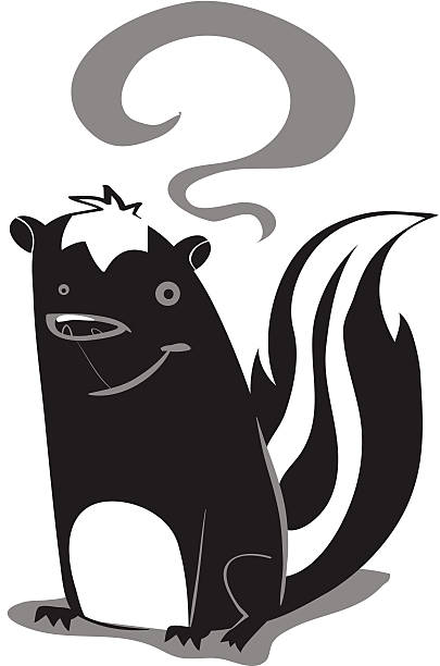 Sam the Skunk Sam is a skunk who is looking for love. If you know any nice female skunks on the market please email him at samtheskunk@skunklove.com. skunk stock illustrations