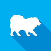 Vector illustration of a white samoyed dog with a shadow on a square blue background.