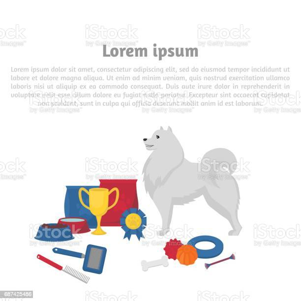 Samoyed with dog items pet care elements for grooming walking feeding vector id687425486?b=1&k=6&m=687425486&s=612x612&h=ajtanmg9sjz7 edwouglewpbyksezghdskw6o6xsyuc=