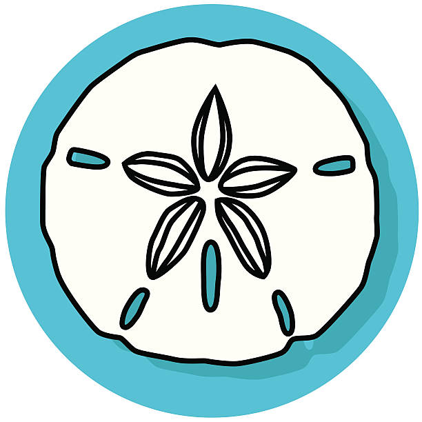 Royalty Free Sand Dollar Clip Art, Vector Images ...