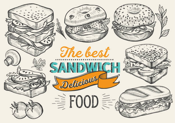 Sandwich illustration - bagel, snack, hamburger for restaurant. Vector hand drawn poster for cafe and fast food truck. Design with lettering and doodle vintage graphic. Sandwich illustration - bagel, snack, hamburger for restaurant bread drawings stock illustrations