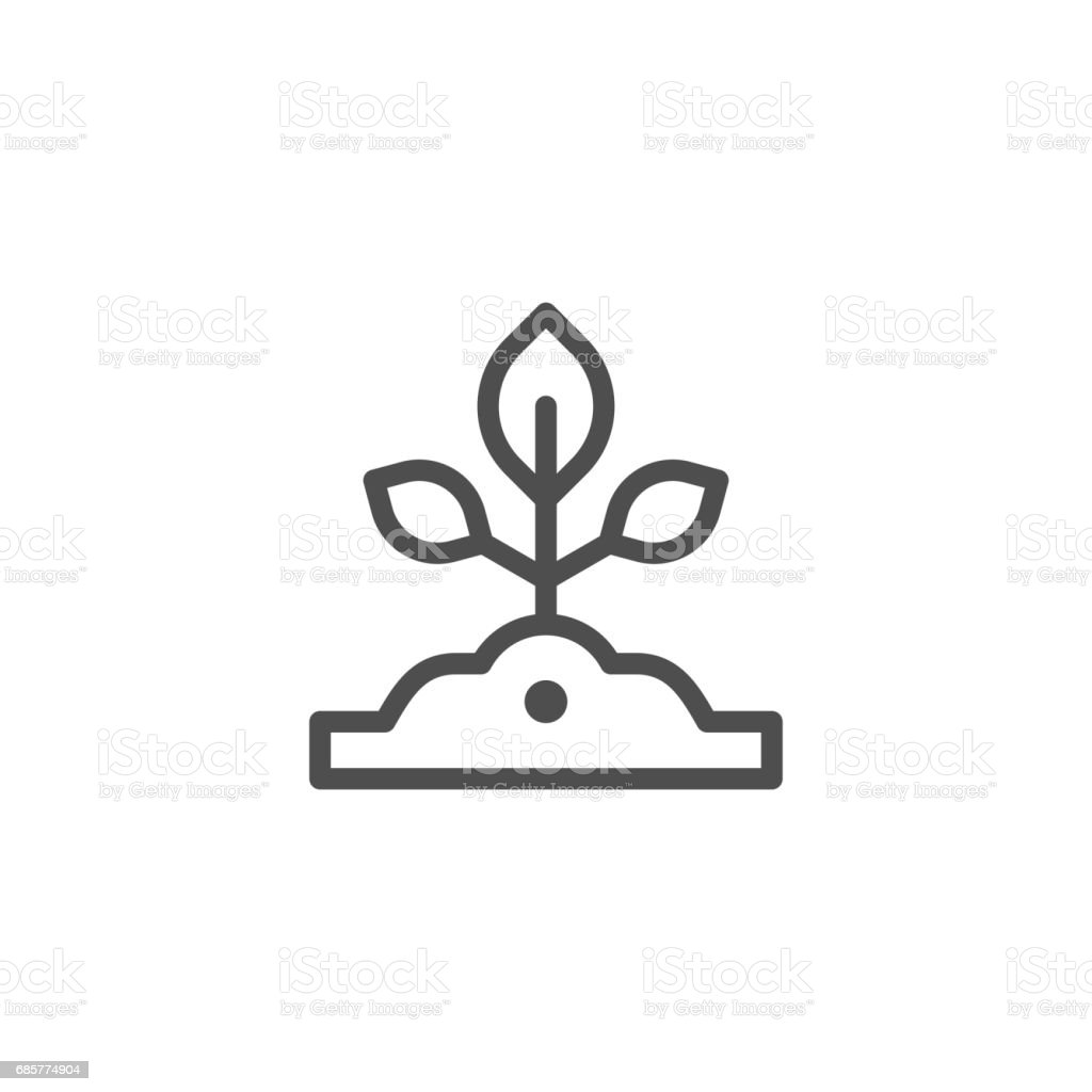 Sapling line icon royalty-free sapling line icon stock vector art & more images of agriculture