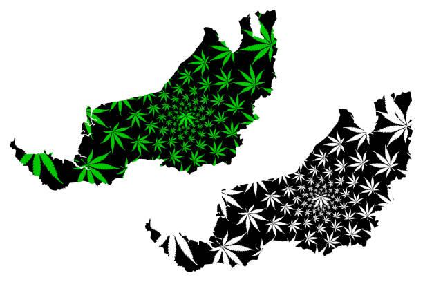 sarawak (staaten und föderale gebiete von malaysia, föderation von malaysia) karte ist entworfen cannabis blatt grün und schwarz, sarawak karte aus marihuana (marihuana, thc) laub, - kuching stock-grafiken, -clipart, -cartoons und -symbole