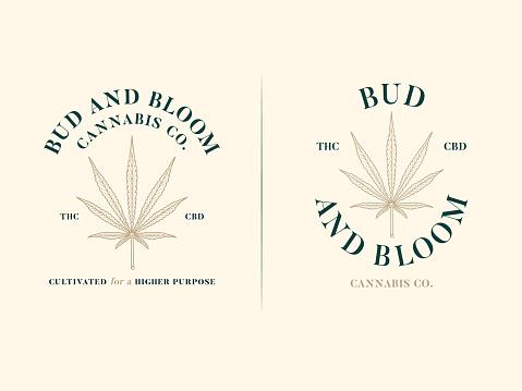 Sativa leaf bud and bloom ex. 1 and 2 cream