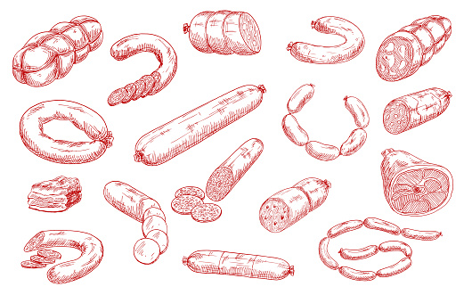 Sausages and meat products vector sketch set