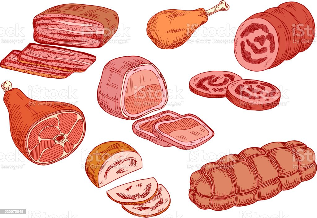 Sausages, ham and baked meat sketch icons vector art illustration