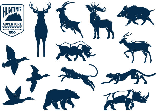 savanna and forest animals for hunting icons - moose stock illustrations