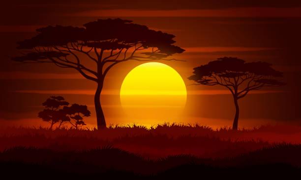 ilustracja wektorowa krajobrazu sawanny. - zachód słońca stock illustrations