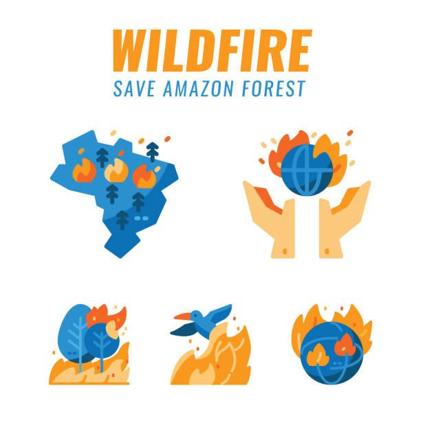 stockillustraties, clipart, cartoons en iconen met sla amazonewoud en wilde dieren van bosbranden. - illustraties van bosbrand