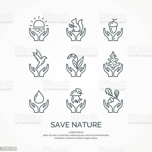 Save nature the set of linear forest of icons vector animals and vector id873837956?b=1&k=6&m=873837956&s=612x612&h=crxs2ffmjwazezspwtpl5mrn8wxoc6x5fmwry 7cz7c=