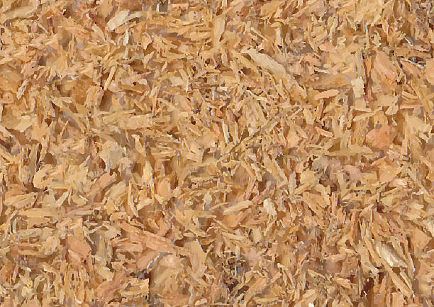 Royalty free sawdust clip art vector images