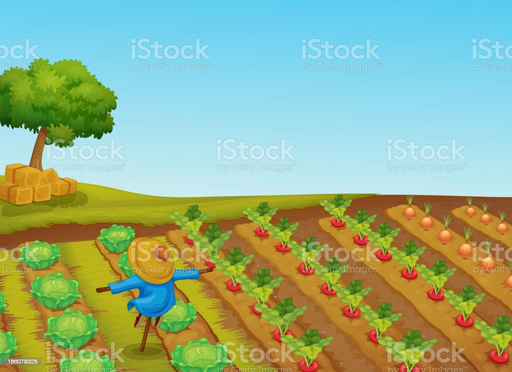 scarecrow royalty-free scarecrow stock vector art & more images of agriculture