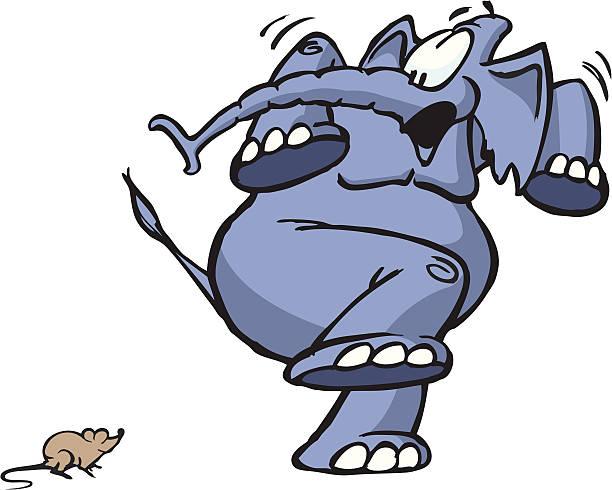 """Résultat de recherche d'images pour """"éléphant peur souris"""""""