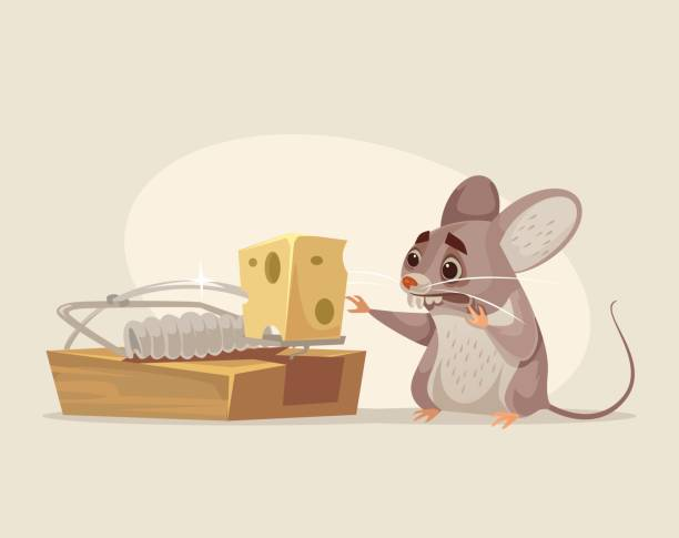 Scared mouse character trying to get cheese out of mousetrap vector art illustration