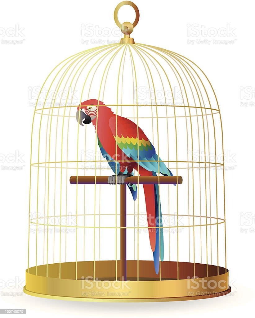 scarlet macaw in a cage vector art illustration