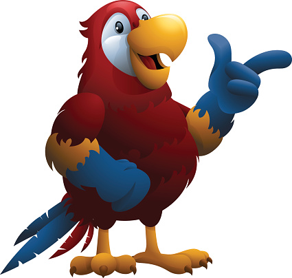 Scarlet Macaw: Pointing