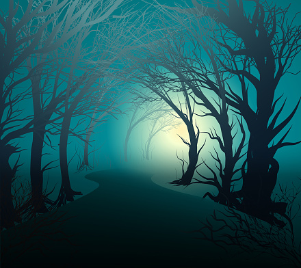 scary forest with light, park lane at night with mystery yellow light, halloween mystery, vector