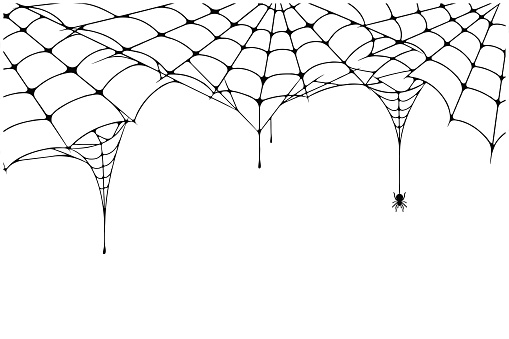Scary spider web background. Cobweb background with spider. Spooky spider web for Halloween decoration