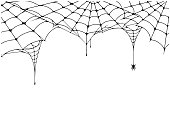 Scary spider web background. Cobweb background with spider. Spooky spider web for Halloween decoration. Vector