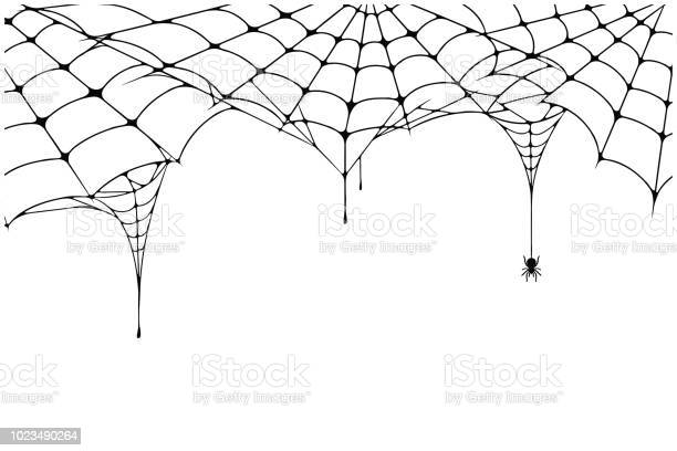 Scary spider web background cobweb background with spider spooky web vector id1023490264?b=1&k=6&m=1023490264&s=612x612&h=7bxz h81vnqvufhev89iovxgxx6hp77igsmyvdxvoi4=