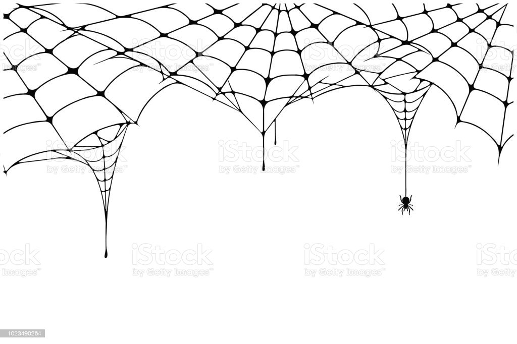 Fondo de web spider de miedo. Fondo de tela de araña con araña. Escalofriante araña para decoración de Halloween - ilustración de arte vectorial