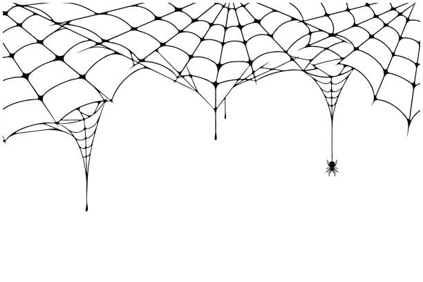 scary spider web background. cobweb background with spider. spooky spider web for halloween decoration - halloween stock illustrations, clip art, cartoons, & icons