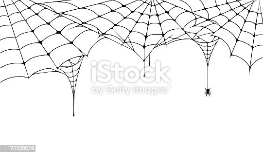 istock Scary spider web, Halloween festive background. Cobweb on white background with spider. Spooky spider web for Halloween poster, greeting card, party invitation etc 1170338029