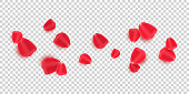 istock Scattered red rose petals isolated on transparent background. Valentine's Day. Romantic flowers for Valentine's Day or wedding. Vector illustration. ESP 10 1197778371