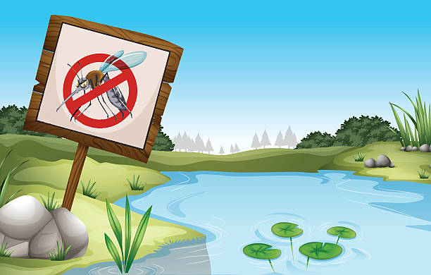 scene with pond and sign no mosquitoes - staw woda stojąca stock illustrations
