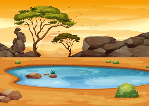 stockillustraties, clipart, cartoons en iconen met scène met vijver in het woestijn gebied - safari
