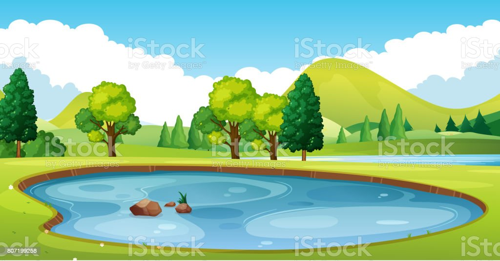 Scene with pond in the field vector art illustration