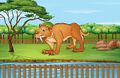 Scene with sabertooth in the park illustration
