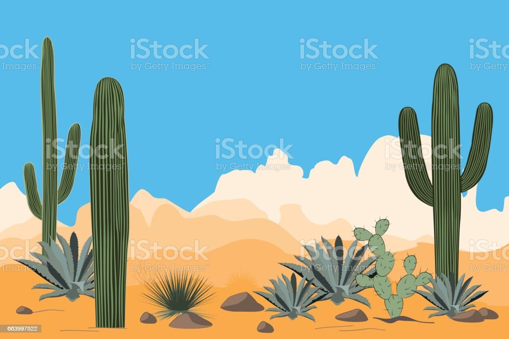 Scenery of the arid desert. Landscape of a valley with Saguaro cacti. View of mountains, clear blue sky background vector art illustration