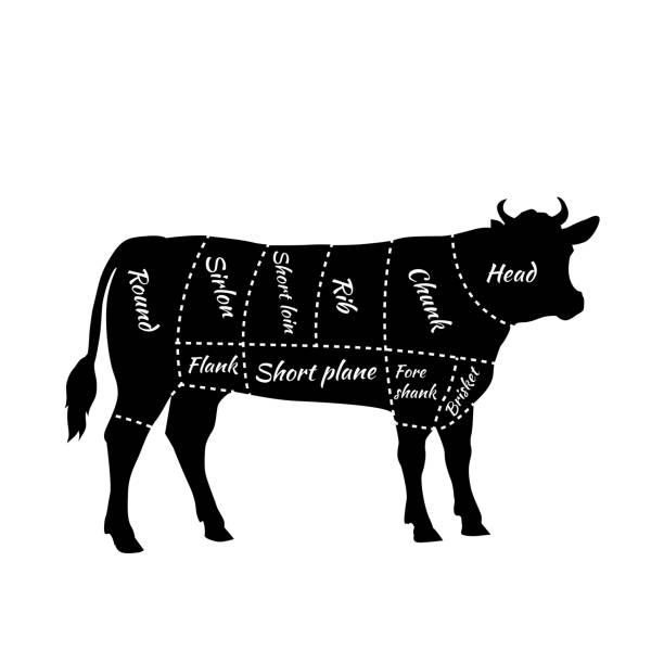 gestaltet von rindfleisch für steak und gerösteter - rindfleisch stock-grafiken, -clipart, -cartoons und -symbole
