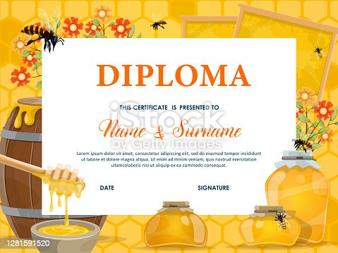School diploma, certificate vector template with honey, bees and honeycombs. Cartoon education school or kindergarten frame with flowers, honey dipper and wooden barrel with glass jars, kids diploma