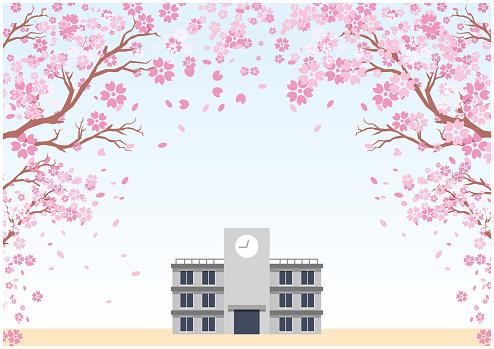 School entrance ceremony spring cherry blossoms