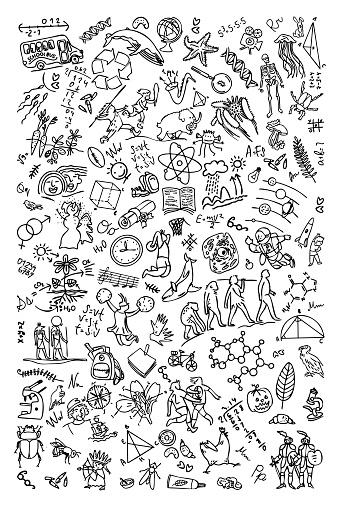 School notebook cover. school-themed pattern, simple icon outline, black outline on white background. . Vector illustrations of banners, posters, leaflets, cards, covers, etc. Doodle style