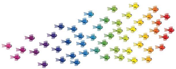 École de poissons - arc en ciel coloré équipe de jeunes poissons - illustration bande dessinée vecteur isolé sur fond blanc. - Illustration vectorielle