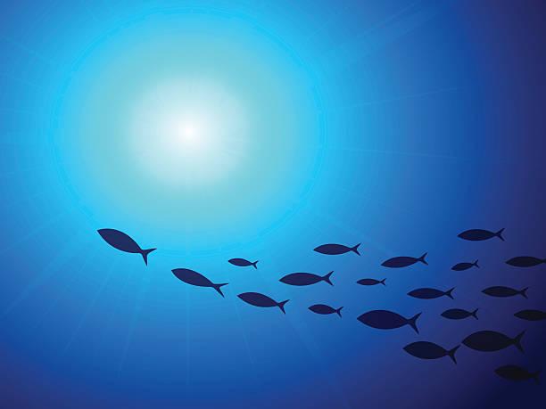 Banc de poissons sous l'eau - Illustration vectorielle