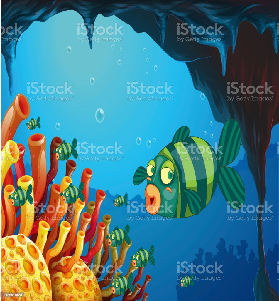 school of stripe-colored fishes under the sea vector art illustration