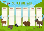 School timetable with wild animals, education vector schedule with deer, boar and black grouse, bear and elk, hare and duck. Daily lessons planner for children, educational time table cartoon template