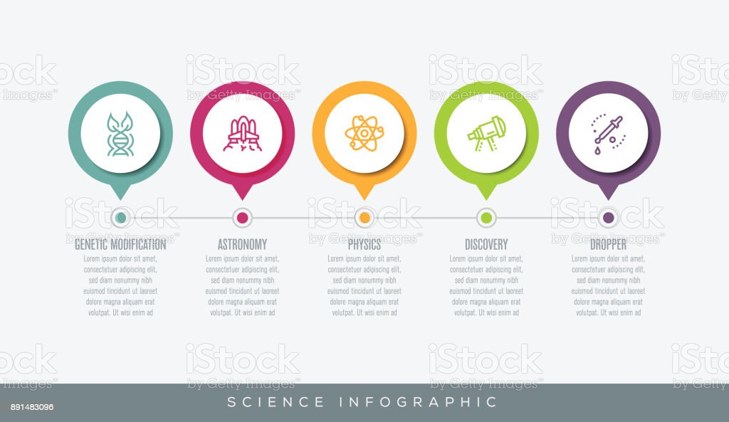 Science Infographic vector art illustration