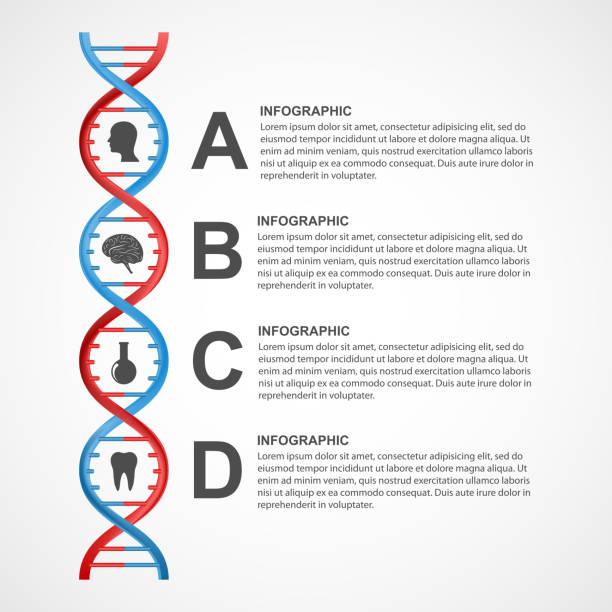 DNA science infographics. Vector design element. vector art illustration