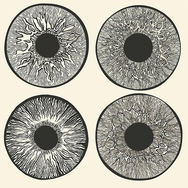 Science of the human eye. vector art illustration
