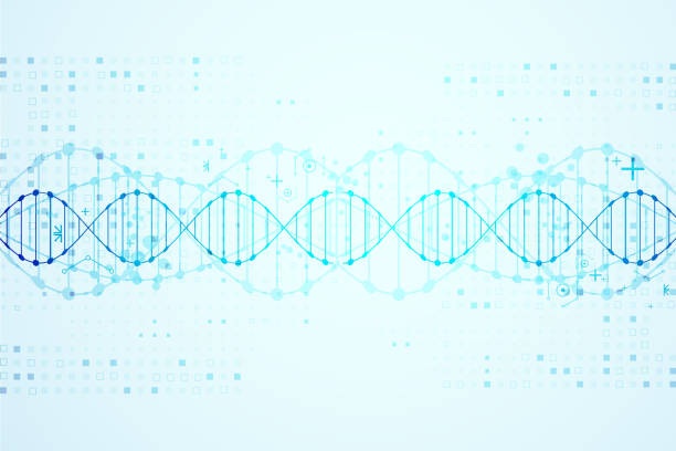 Science template, DNA background. vector art illustration