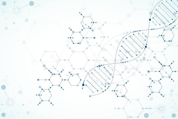 ilustraciones, imágenes clip art, dibujos animados e iconos de stock de plantilla de la ciencia, fondo de las moléculas de adn. - biotecnología