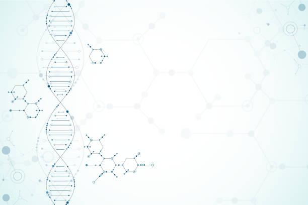 illustrazioni stock, clip art, cartoni animati e icone di tendenza di modello scientifico, sfondo molecole di dna. - dna