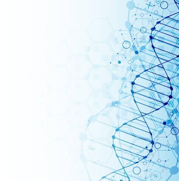 ilustraciones, imágenes clip art, dibujos animados e iconos de stock de plantilla de la ciencia, fondo de las moléculas de adn. - investigación genética