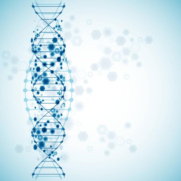 wissenschaft muster, tapeten oder banner mit dna-molekülen. - genforschung stock-grafiken, -clipart, -cartoons und -symbole